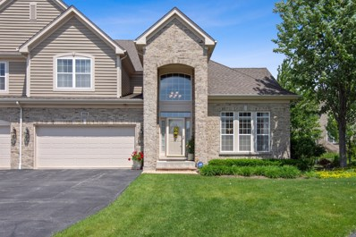 713 Fieldstone Court, Inverness, IL 60010 - #: 10419886