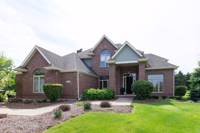 24550 Killarney Court, Naperville, IL 60564 - #: 10420401