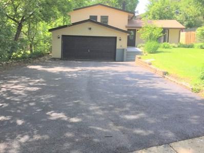 317 Hiawatha Drive, Lake In The Hills, IL 60156 - #: 10421437