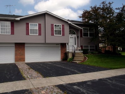 19757 S Edinburgh Lane UNIT 19757, Frankfort, IL 60423 - #: 10422894