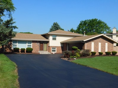 13938 Citation Drive, Homer Glen, IL 60467 - #: 10423193