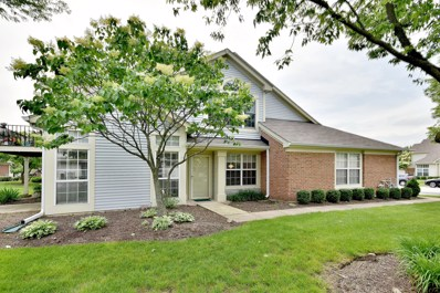 30W071  Willow UNIT 30W071, Warrenville, IL 60555 - #: 10423375