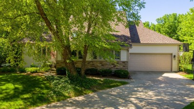 847 Mobile Court, Naperville, IL 60540 - #: 10423750