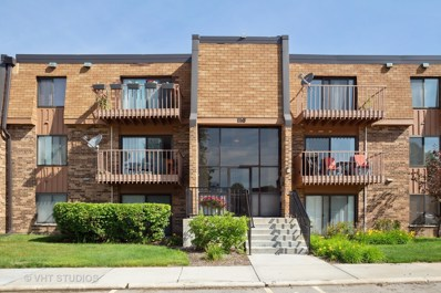 116 S Mullingar Court UNIT 2A, Schaumburg, IL 60193 - MLS#: 10423783
