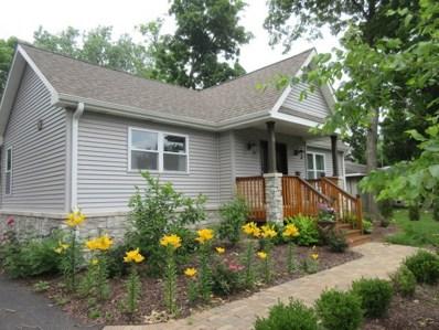 8 Oak Street, Port Barrington, IL 60010 - #: 10424318