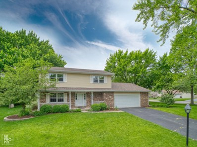 6S600  Meadowbrook, Naperville, IL 60540 - #: 10425032