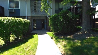 950 E Old Willow Road UNIT 101, Prospect Heights, IL 60070 - #: 10425253