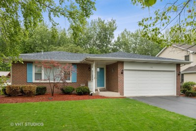 1710 Hidden Valley Drive, Bolingbrook, IL 60490 - #: 10425466