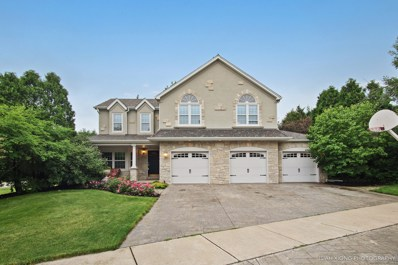 1 Blackberry Court, Sugar Grove, IL 60554 - #: 10425584