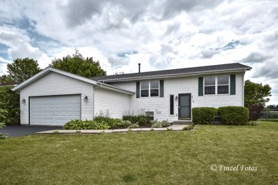 210 Morning Sun Trail, Capron, IL 61012 - #: 10426022