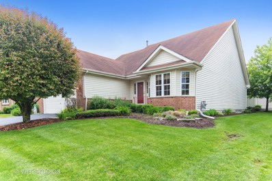 21323 W Redwood Drive, Plainfield, IL 60544 - #: 10426699