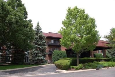 1049 W Ogden Avenue UNIT 207, Naperville, IL 60563 - #: 10427106