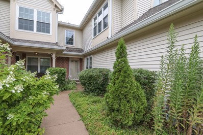 2372 County Farm Lane UNIT E214, Schaumburg, IL 60194 - #: 10428143