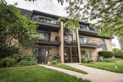 11110 S 84th Avenue UNIT 3A, Palos Hills, IL 60465 - MLS#: 10428863
