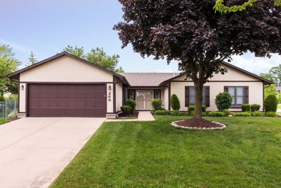 269 Evergreen Lane, Bloomingdale, IL 60108 - #: 10429095