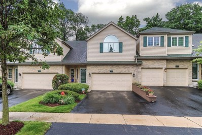 45 Charlemagne Circle, Roselle, IL 60172 - #: 10429271