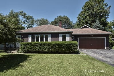 21 Wander Way, Lake In The Hills, IL 60156 - #: 10430510