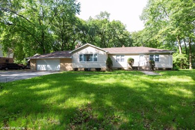 14611 Empire Avenue, Dolton, IL 60419 - #: 10431762