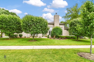 20184 Crystal Lake Way, Frankfort, IL 60423 - #: 10431811