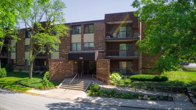 460 Raintree Court UNIT 3N, Glen Ellyn, IL 60137 - #: 10432124