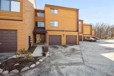 9553 Arrowhead Drive UNIT E1, Hickory Hills, IL 60457 - #: 10432518