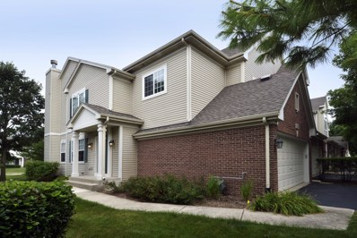 6123 Halloran Lane UNIT 41-1, Hoffman Estates, IL 60192 - #: 10432635