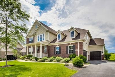 23610 N Sanctuary Club Drive, Kildeer, IL 60047 - #: 10432718