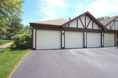 263 Buckingham Court UNIT A1, Schaumburg, IL 60193 - #: 10432765