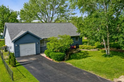 9 Linden Street, Lake In The Hills, IL 60156 - #: 10433243