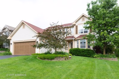 181 Winding Canyon Way, Algonquin, IL 60102 - #: 10433647