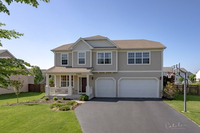 10269 Central Park Boulevard, Huntley, IL 60142 - #: 10435234