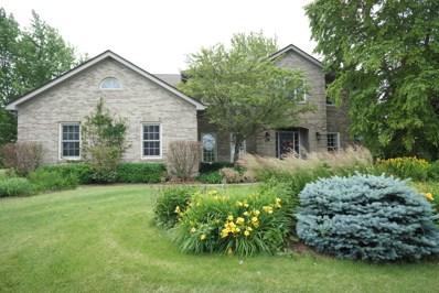 1656 Spring Valley Drive, Elburn, IL 60119 - #: 10435669