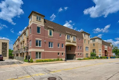 922 Warren Avenue UNIT 402, Downers Grove, IL 60515 - #: 10435808
