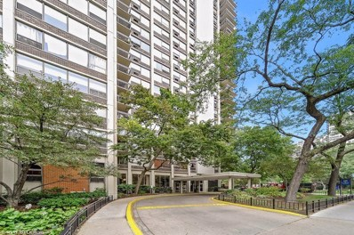 1255 N Sandburg Terrace UNIT 2901, Chicago, IL 60610 - #: 10436113
