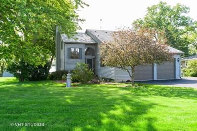 37885 N Douglas Lane, Lake Villa, IL 60046 - #: 10436118