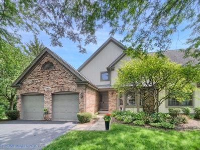 10401 Morningside Court, Orland Park, IL 60462 - #: 10436295