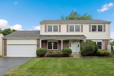 1859 Lisson Road, Naperville, IL 60565 - #: 10438410