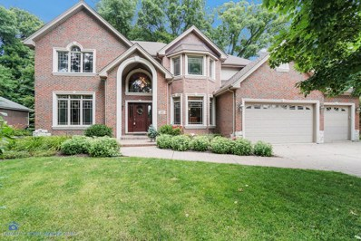 217 Hampshire Court, New Lenox, IL 60451 - #: 10438918