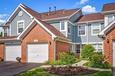 234 Mansfield Way, Roselle, IL 60172 - #: 10439153