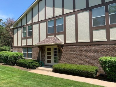 140 W Golf Road W UNIT B, Libertyville, IL 60048 - #: 10439312