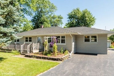 102 Michael Lane, New Lenox, IL 60451 - #: 10439975