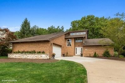 13248 W Creekside Drive, Homer Glen, IL 60491 - #: 10440195
