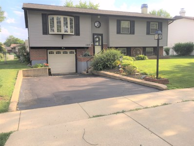 1185 Old Mill Lane, Hanover Park, IL 60133 - #: 10440445