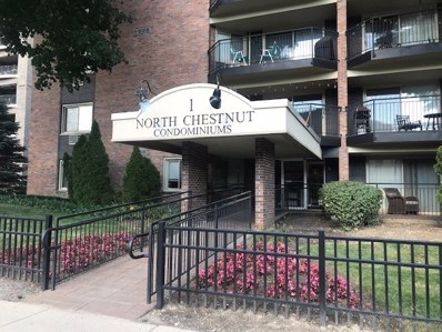 1 N Chestnut Avenue UNIT 1B, Arlington Heights, IL 60005 - #: 10440947