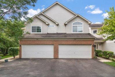 339 Abington Woods Drive, Aurora, IL 60502 - #: 10441888