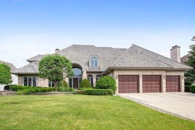 10642 Misty Hill Road, Orland Park, IL 60462 - #: 10441922