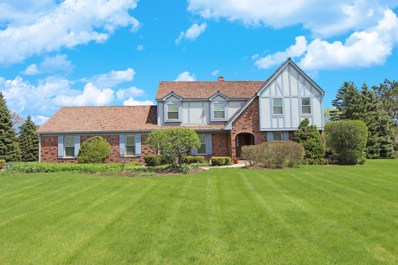 1610 Picardy Court, Long Grove, IL 60047 - #: 10443154