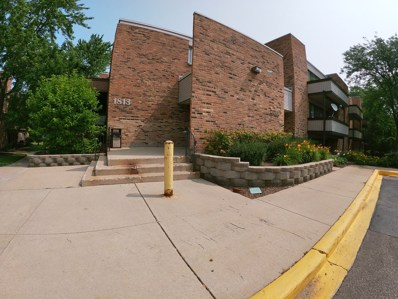 1813 Hemlock Place UNIT 207, Schaumburg, IL 60173 - #: 10443535