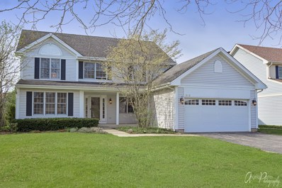 313 Richmond Place, Vernon Hills, IL 60061 - #: 10443765