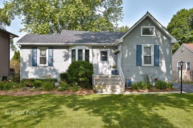 309 Meadow Lane, Lake In The Hills, IL 60156 - #: 10443803